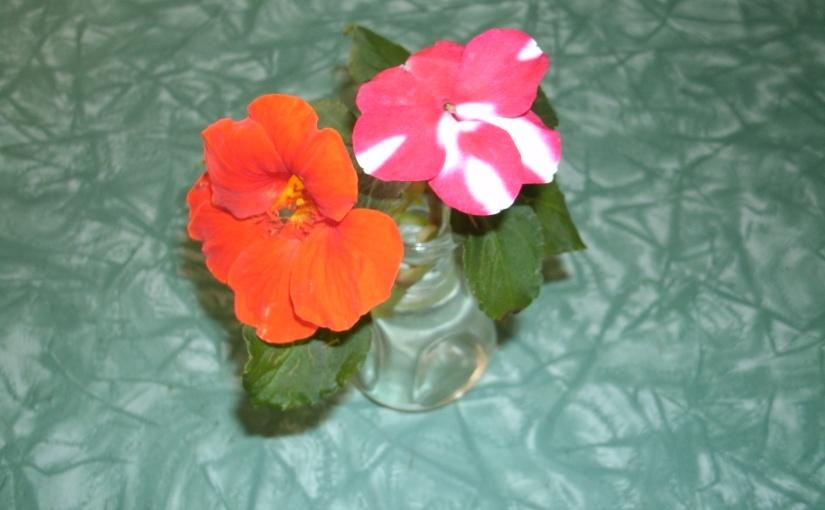Cottage Garden Gems