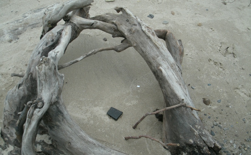 Shapes of Nature's Beachside Artistry