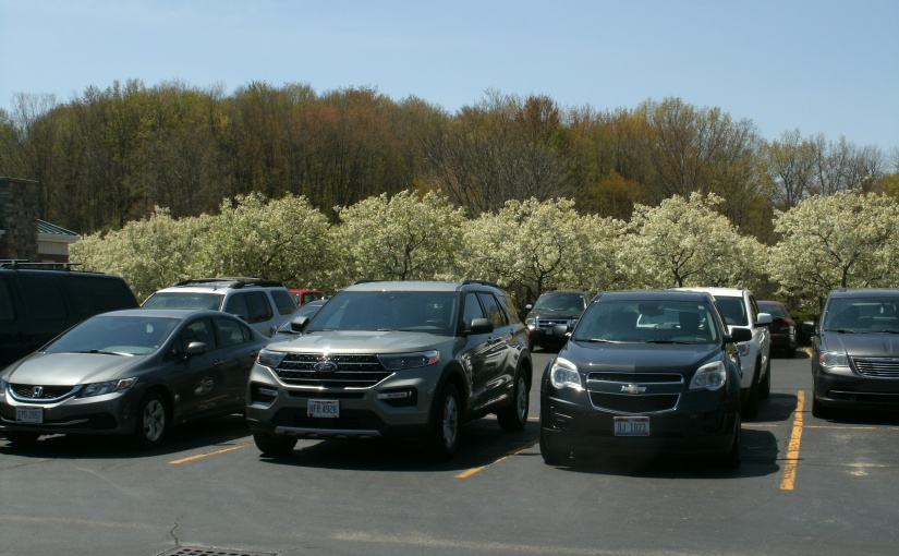 Parfait of Vehicles, Blossoms, Emerging Leaves