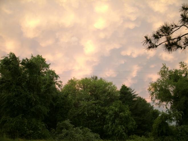 picture of mammatocumulus clouds
